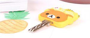 custom key cover